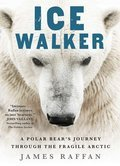 Cover image for Ice Walker